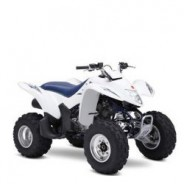 Suzuki Quadsport 250